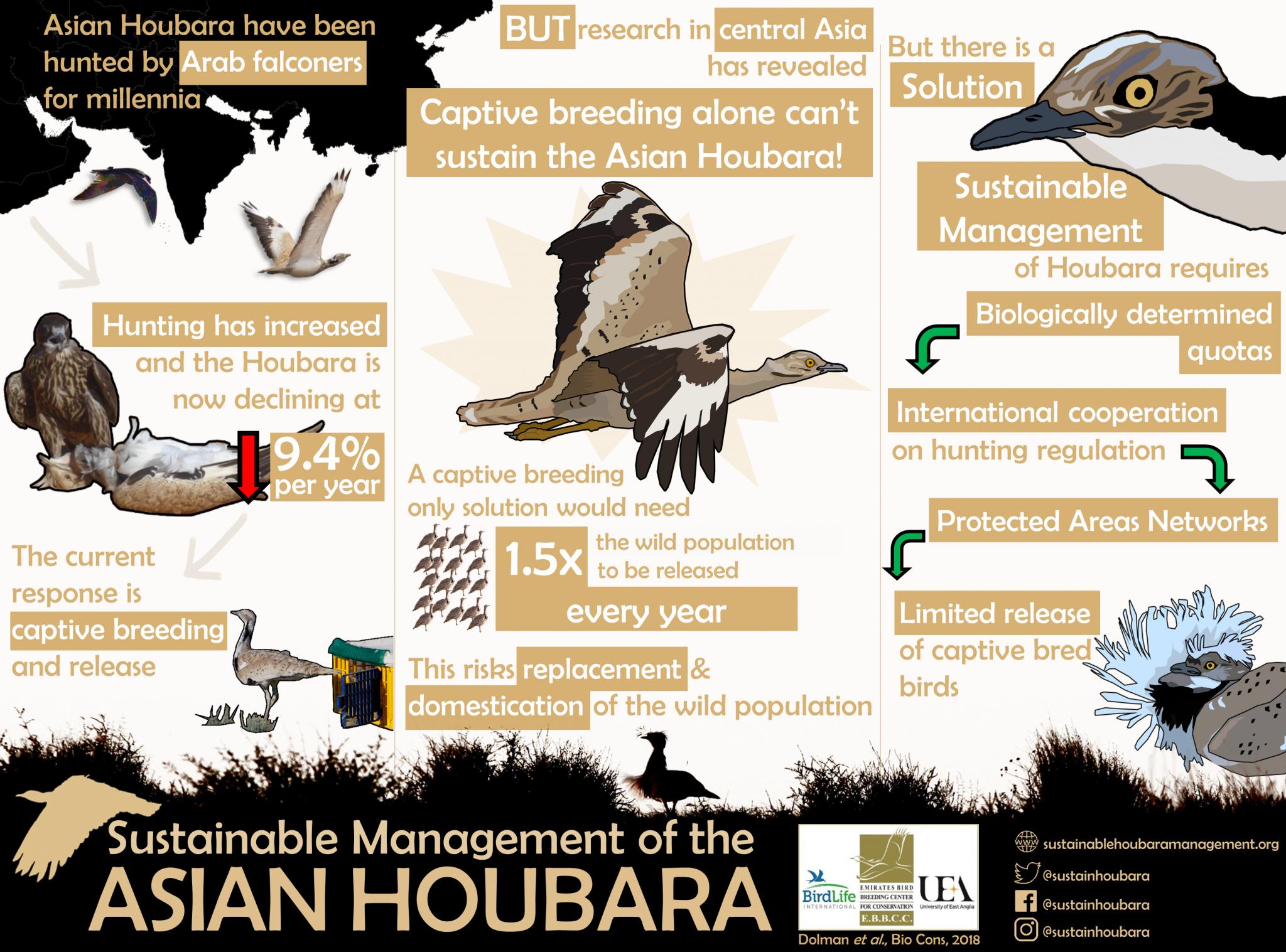 Sustainable Management of Asian Houbara